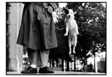 Paris, France, 1989 © Elliot Erwitt Magnum Photos.
