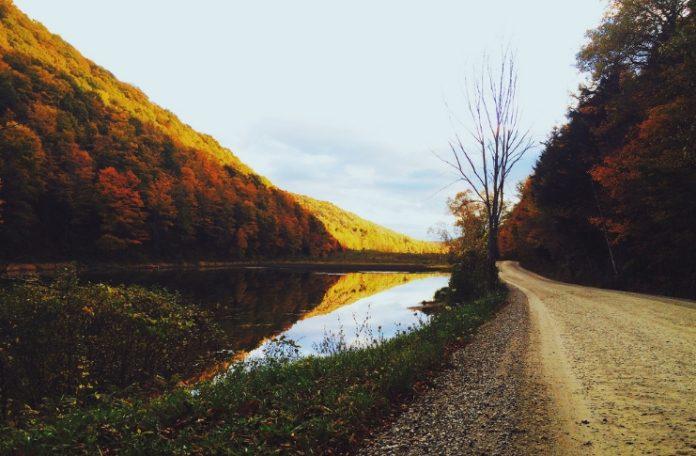 Foto colori bellissimi dell' autunno
